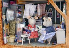 Casa ratolins 10